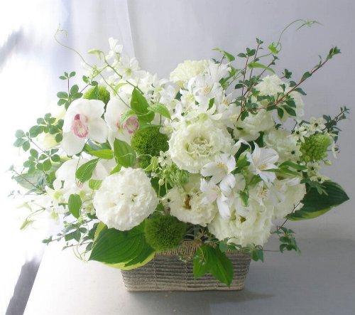 初夏/お洒落に/お悔やみ花 a100716