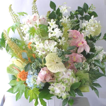 初夏のお祝い花 a110629