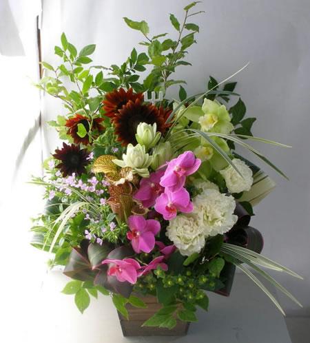 夏のシックな和モダンな花 a122716
