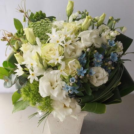 白い花とブルースター a140411