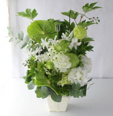 グリーンアンスリウムと白い花 a170915