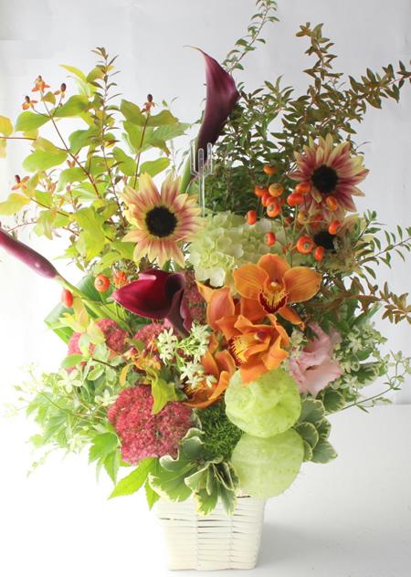 秋の季節の花 a170929