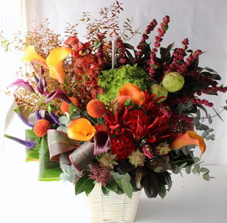 楽屋見舞い花 a171102-2