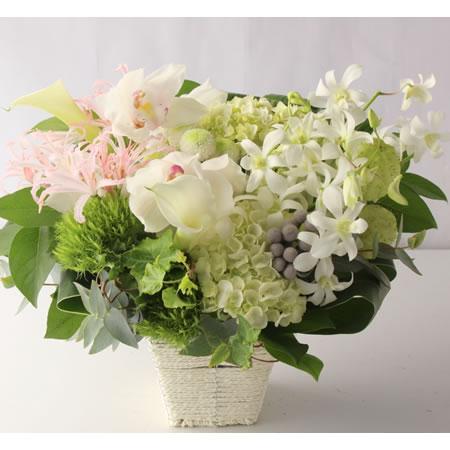 白色に淡いピンク系を添えたお供え花 a1721102