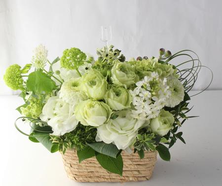 白グリーン横長タイプの花 a180402