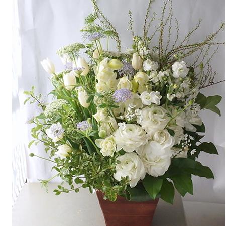 冬の白い花、トールタイプのお供え花 a160114