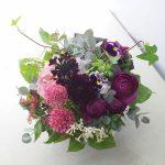 a140305 ラナンキュラス 紫可愛い系