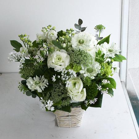 冬の白系/お悔やみ花 a212116